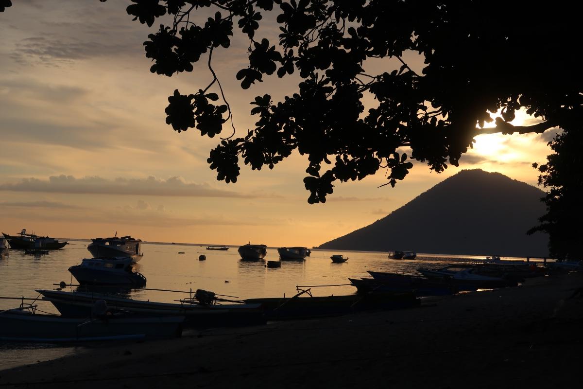Bunaken : des tombants à tomber – 24 juin au 3juillet