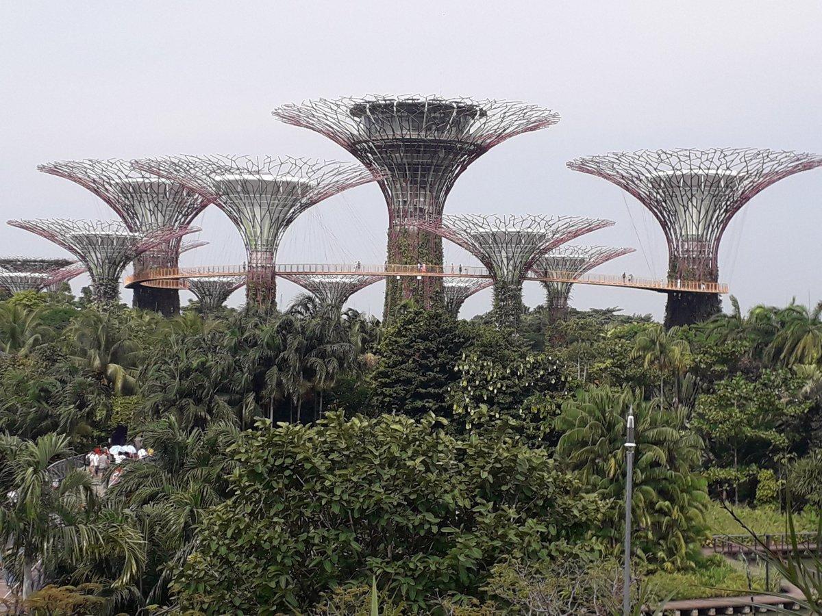SINGAPOUR : 3 au 5 juillet2019